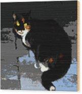 Halloween Cat Wood Print