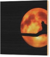 Halloween Night Wood Print