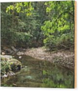 Halo Of Green Wood Print