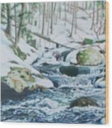 Hamburg Mountain Stream Wood Print
