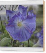 Hameau Bleu Wood Print