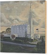 Hamilton New Zealand Temple Wood Print by Jeff Brimley