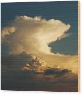 Hammerhead Cloud Wood Print