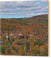 Hammondsport Panorama Wood Print