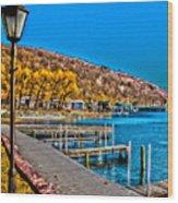 Hammondsport Waterfront Wood Print