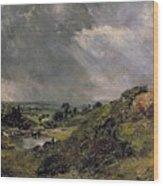 Hampstead Heath Wood Print