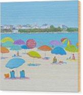 Hampton Beach And Boars Head Wood Print