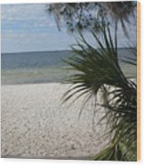 Hampton Beach Lake Weir Florida Wood Print