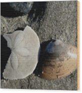 Hampton Beach Wood Print