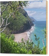 Hanakapiai Beach Wood Print