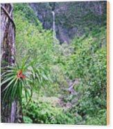 Hanakapiai Valley Wood Print