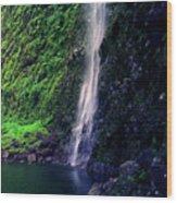 Hanakoa Falls  Wood Print