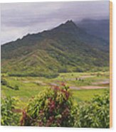 Hanalei Valley Panorama Wood Print