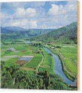 Hanalei Valley Taro Field Wood Print