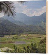 Hanalei Valley Taro Fields - Kauai Wood Print