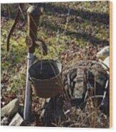 Hand Pump In The Fall Wood Print