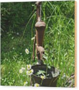 Hand Pump In The Spring Wood Print