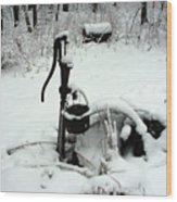 Hand Pump In The Winter Wood Print