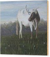 Handsome Longhorn Wood Print