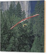 Hang Glider In Yosemite Wood Print