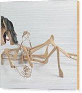 Tantric Hangers On Wood Print