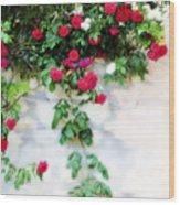 Hangin Roses Wood Print