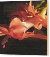 Hanging Cactus Flower Wood Print