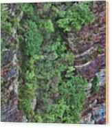 Hanging Gardens Wood Print