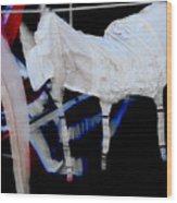 Hanging Garters  Wood Print