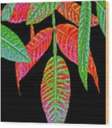 Hanging Green And Red Leafs... Wood Print