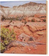Hanging On The Cliff At Kodachrome Basin State Park Wood Print