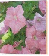 Hanging Pink Petunias Basket Wood Print