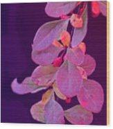 Hanging Purple Wood Print