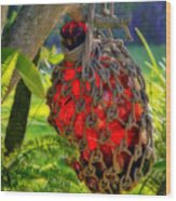 Hanging Red Bottle Garden Art Wood Print