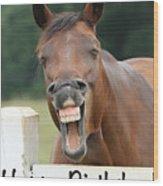 Happy Birthday Smiling Horse Wood Print