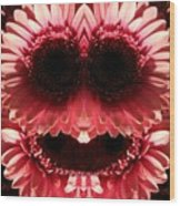 Happy Daisies Are Here Again Wood Print