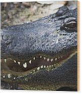 Happy Florida Gator Wood Print