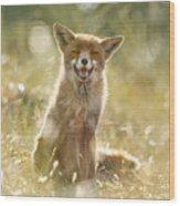 Happy Fox Is Happy Wood Print