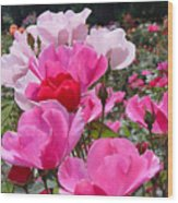 Happy Pinks Wood Print