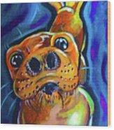 Happy Seal Wood Print