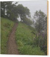 Happy Trail Wood Print
