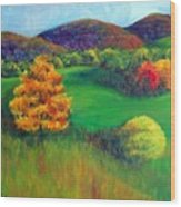 Happy Valley Hills Wood Print by Lyn Vic