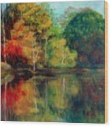 Happy Valley Pond Wood Print by Lyn Vic