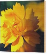 Happy Yellow Flower Wood Print