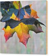 Harbinger Of Autumn Wood Print by Sean Griffin
