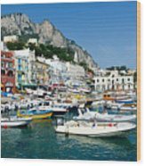 Harbor Of Isle Of Capri Wood Print by Jon Berghoff