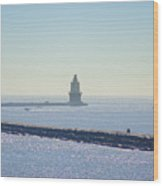 Harbor Of Refuge Lighthouse  Lewes Delaware Wood Print