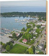 Harbor Springs From Above Wood Print