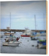Harbour Boats Wood Print