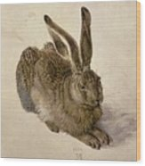 Hare Wood Print by Albrecht Durer